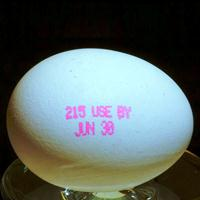 egg 200c 27 Advantages of Putting an Expiration Date on New Ministries
